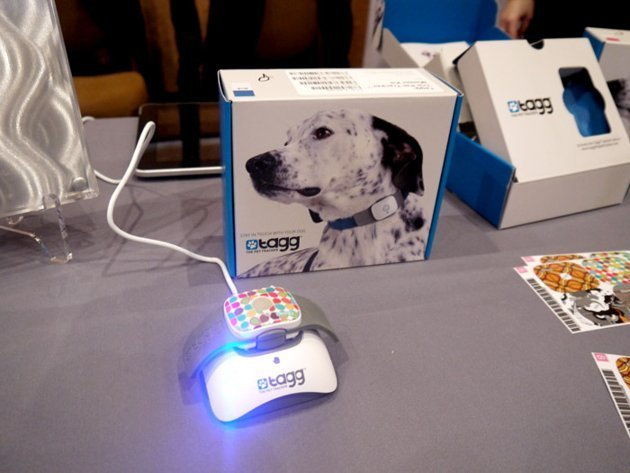 CES 2012 Tagg tracker GPS dog