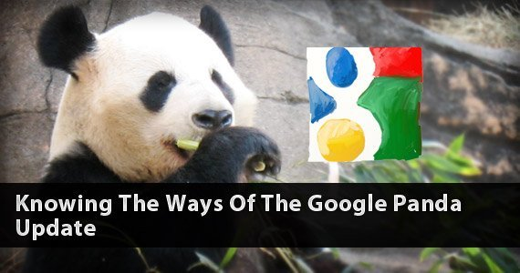 How Google Panda Has Changed The Way Of Doing Business?