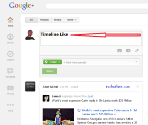 Google+ facebook like Timeline view with sidebar features