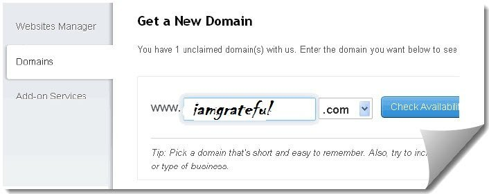 Free .com Domain Name from Google and intuit