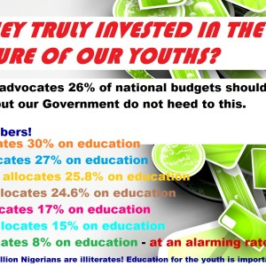 Are they truly invested in the future of Nigerian youths with this 8% allocation on education?