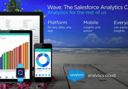 What does Salesforce Wave Analytics Cloud Offer?