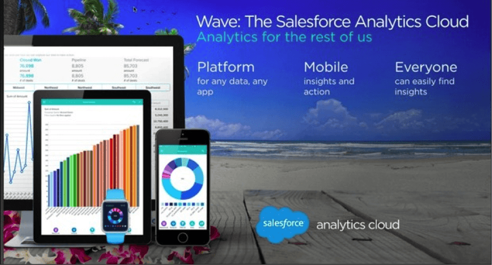 Salesforce Wave Analytics cloud