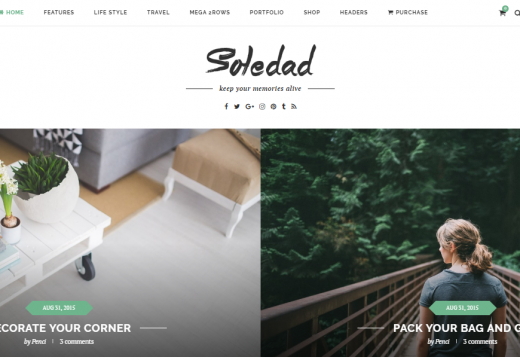 Best WordPress Themes For Websites In 2016 That'd Stand You Out Of The Pack