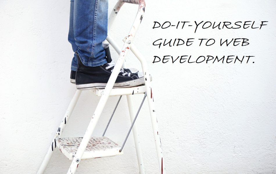 Do It Yourself Guide to Website Development