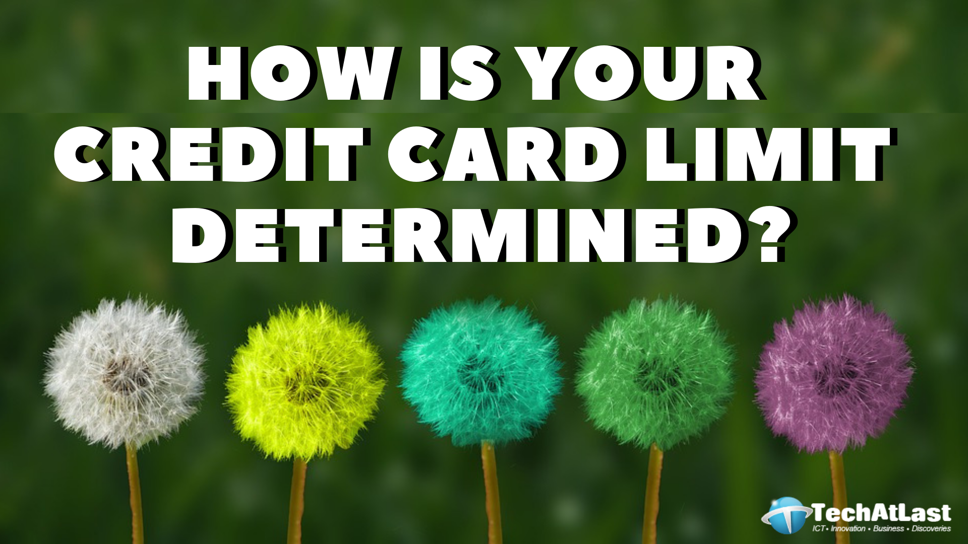 How Your Credit Card Limit is Determined