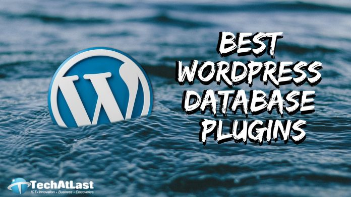 Best WordPress Database Plugins for Newbies and Experts - TechAtLast