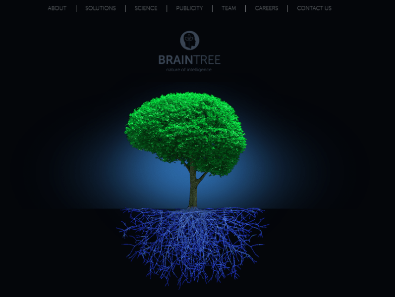 Braintree is a brain box of solutions just as the name implies. The service brings together world-class experts from different areas of expertise such as biological, computer sciences, psychology and software developers, to provide game-changing tech-focused solutions.