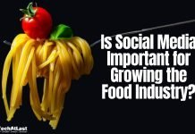Is Social Media Important for Growing the Food Industry_